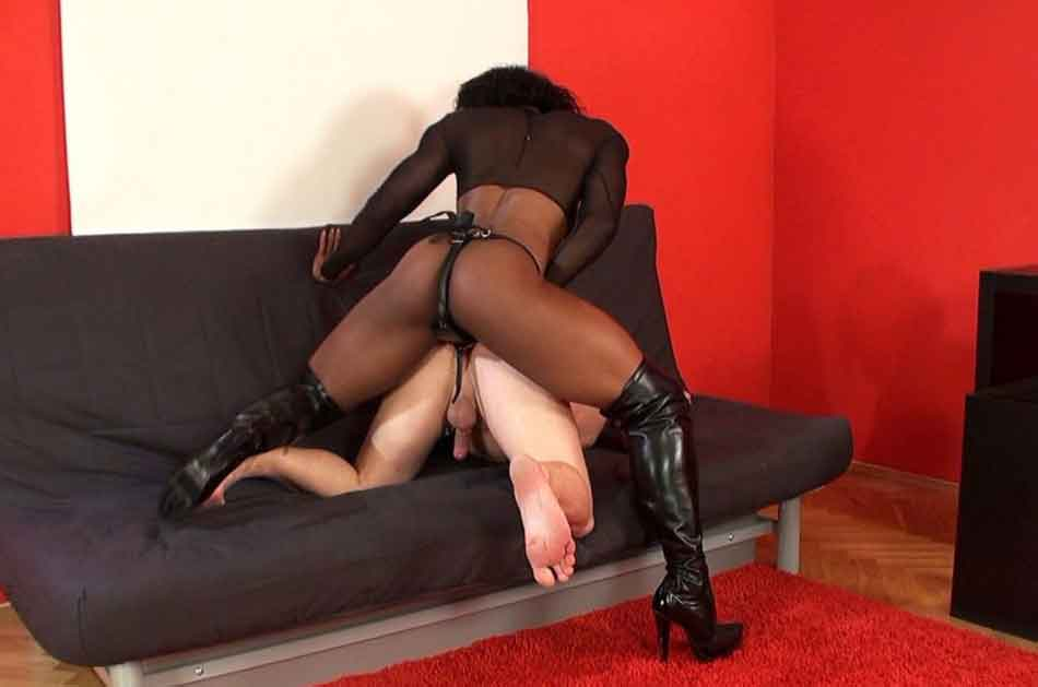 a mistress pegging a sub on couch