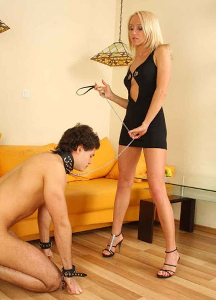 a mistress trains a pet